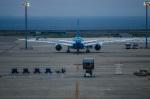 quicksilverさんが、中部国際空港で撮影したボーイング 787-8 Dreamlinerの航空フォト(写真)