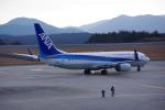 Airfly-Superexpressさんが、広島空港で撮影した全日空 737-881の航空フォト(写真)