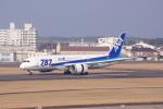 Airfly-Superexpressさんが、宮崎空港で撮影した全日空 787-8 Dreamlinerの航空フォト(写真)