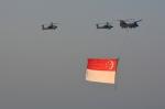 RUSSIANSKIさんが、シンガポール・チャンギ国際空港で撮影したシンガポール空軍 CH-47Aの航空フォト(飛行機 写真・画像)