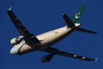 ちょっぱさんが、成田国際空港で撮影したパキスタン国際航空 A310-325/ETの航空フォト(飛行機 写真・画像)