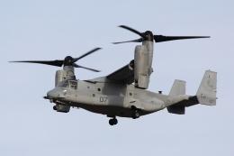 たろりんさんが、霞目駐屯地で撮影したアメリカ海兵隊 MV-22Bの航空フォト(飛行機 写真・画像)