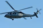 うめやしきさんが、厚木飛行場で撮影したアメリカ海軍 MH-60S Knighthawk (S-70A)の航空フォト(飛行機 写真・画像)