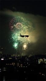 ぱいかさんが、伊丹空港で撮影した全日空 787-9の航空フォト(写真)