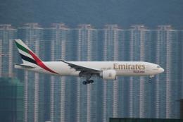 airdrugさんが、香港国際空港で撮影したエミレーツ航空 777-F1Hの航空フォト(飛行機 写真・画像)