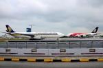 RUSSIANSKIさんが、シンガポール・チャンギ国際空港で撮影したシンガポール航空 A330-343Xの航空フォト(写真)