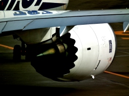 fly_a_high_pitchさんが、羽田空港で撮影した全日空 787-8 Dreamlinerの航空フォト(飛行機 写真・画像)