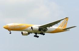 航空フォト:9V-OTC スクート (〜2017) 777-200