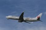 Fly Yokotayaさんが、伊丹空港で撮影したJALエクスプレス 737-846の航空フォト(写真)