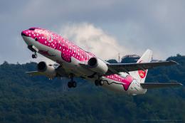 shiro-irukaさんが、岡山空港で撮影した日本トランスオーシャン航空 737-446の航空フォト(飛行機 写真・画像)