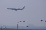 関空と同い年さんが、関西国際空港で撮影したチャイナエアライン A330-302の航空フォト(写真)