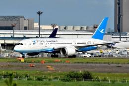 tsubasa0624さんが、成田国際空港で撮影した厦門航空 787-8 Dreamlinerの航空フォト(飛行機 写真・画像)