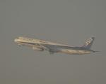 fukucyanさんが、羽田空港で撮影した全日空 A321-131の航空フォト(写真)