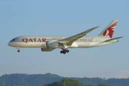 シロクマパパさんが、プーケット国際空港で撮影したカタール航空 787-8 Dreamlinerの航空フォト(飛行機 写真・画像)