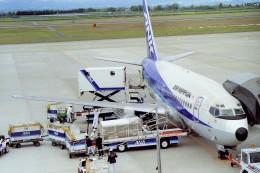 その他の流動資産さんが、鹿児島空港で撮影したエアーニッポン 737-281の航空フォト(飛行機 写真・画像)