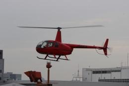 ショウさんが、東京ヘリポートで撮影した日本個人所有 R44 IIの航空フォト(飛行機 写真・画像)
