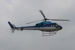 ショウさんが、東京ヘリポートで撮影したエクセル航空 AS355N Ecureuil 2の航空フォト(飛行機 写真・画像)