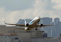 なおさんが、伊丹空港で撮影した全日空 737-881の航空フォト(飛行機 写真・画像)