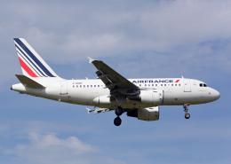 航空フォト:F-GUGF エールフランス航空 A318