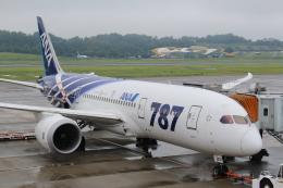 ぽんさんが、高松空港で撮影した全日空 787-8 Dreamlinerの航空フォト(飛行機 写真・画像)