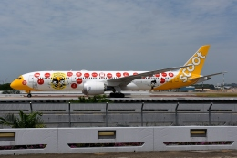 RUSSIANSKIさんが、シンガポール・チャンギ国際空港で撮影したスクート (〜2017) 787-9の航空フォト(写真)