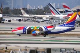 まいけるさんが、ロサンゼルス国際空港で撮影したサウスウェスト航空 737-7H4の航空フォト(写真)