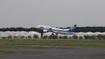 junieさんが、成田国際空港で撮影した全日空 787-8 Dreamlinerの航空フォト(写真)