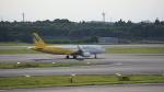 junieさんが、成田国際空港で撮影したバニラエア A320-214の航空フォト(写真)