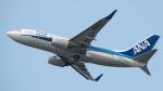 coolinsjpさんが、大連周水子国際空港で撮影した全日空 737-781の航空フォト(写真)