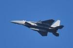 tsubasa0624さんが、千歳基地で撮影した航空自衛隊 F-15J Eagleの航空フォト(飛行機 写真・画像)
