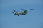 kumagorouさんが、那覇空港で撮影した航空自衛隊 CH-47J/LRの航空フォト(写真)