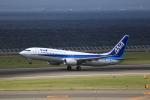 T.Sazenさんが、中部国際空港で撮影した全日空 737-881の航空フォト(飛行機 写真・画像)