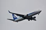 Dojalanaさんが、函館駐屯地で撮影した全日空 737-881の航空フォト(写真)