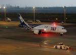 イーヌイさんが、羽田空港で撮影した全日空 787-8 Dreamlinerの航空フォト(写真)