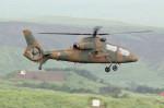 アイスコーヒーさんが、東富士演習場で撮影した陸上自衛隊 OH-1の航空フォト(写真)