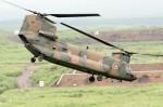 アイスコーヒーさんが、東富士演習場で撮影した陸上自衛隊 CH-47JAの航空フォト(飛行機 写真・画像)