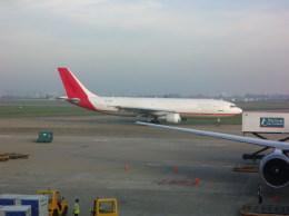 しかばねさんが、タンソンニャット国際空港で撮影したエア・コントラクターズ A300B4-622R(F)の航空フォト(飛行機 写真・画像)