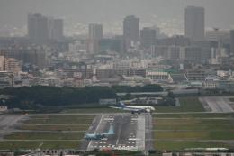 伊丹空港 - Osaka International Airport [ITM/RJOO]で撮影された航空自衛隊 - Japan Air Self-Defense Forceの航空機写真