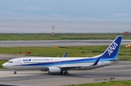 Sorakara_gonさんが、関西国際空港で撮影した全日空 737-881の航空フォト(飛行機 写真・画像)