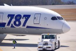 Airfly-Superexpressさんが、広島空港で撮影した全日空 787-8 Dreamlinerの航空フォト(写真)