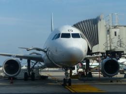 Caravelle se210さんが、レオナルド・ダ・ヴィンチ国際空港で撮影したアリタリア航空 A320-216の航空フォト(飛行機 写真・画像)