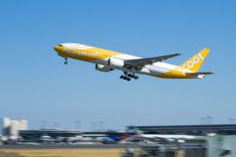 航空フォト:9V-OTA スクート (〜2017) 777-200