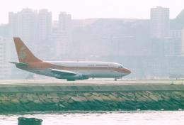 JA8037さんが、啓徳空港で撮影した香港ドラゴン航空 737-2L9/Advの航空フォト(飛行機 写真・画像)