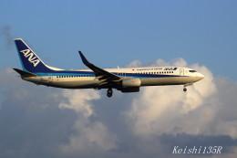 けーし135Rさんが、小松空港で撮影した全日空 737-881の航空フォト(飛行機 写真・画像)