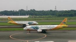 tsubasa0624さんが、ニノイ・アキノ国際空港で撮影したセブパシフィック航空 A319-111の航空フォト(飛行機 写真・画像)