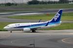 ハピネスさんが、成田国際空港で撮影した全日空 737-781/ERの航空フォト(飛行機 写真・画像)