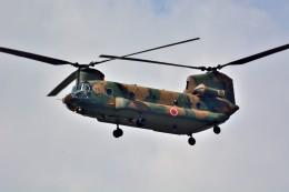 T.Sazenさんが、伊丹空港で撮影した陸上自衛隊 CH-47Jの航空フォト(写真)