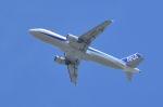 md11jbirdさんが、伊丹駐屯地で撮影した全日空 A320-211の航空フォト(飛行機 写真・画像)