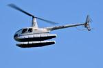 Dojalanaさんが、函館空港で撮影した日本個人所有 R44の航空フォト(飛行機 写真・画像)