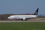 はれ747さんが、紋別空港で撮影した全日空 737-881の航空フォト(写真)
